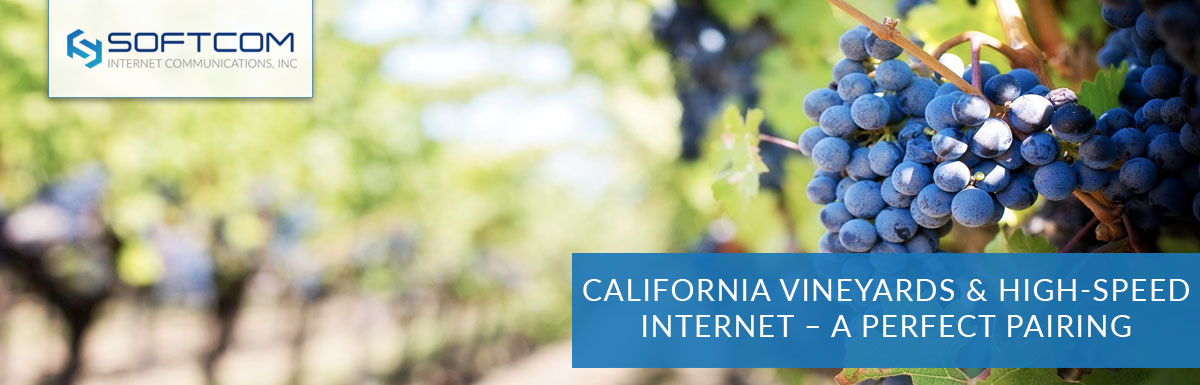 California vineyards and high-speed internet – a perfect pairing