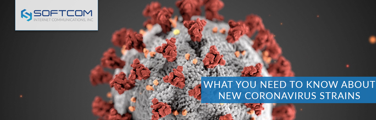 What you need to know about new coronavirus strains